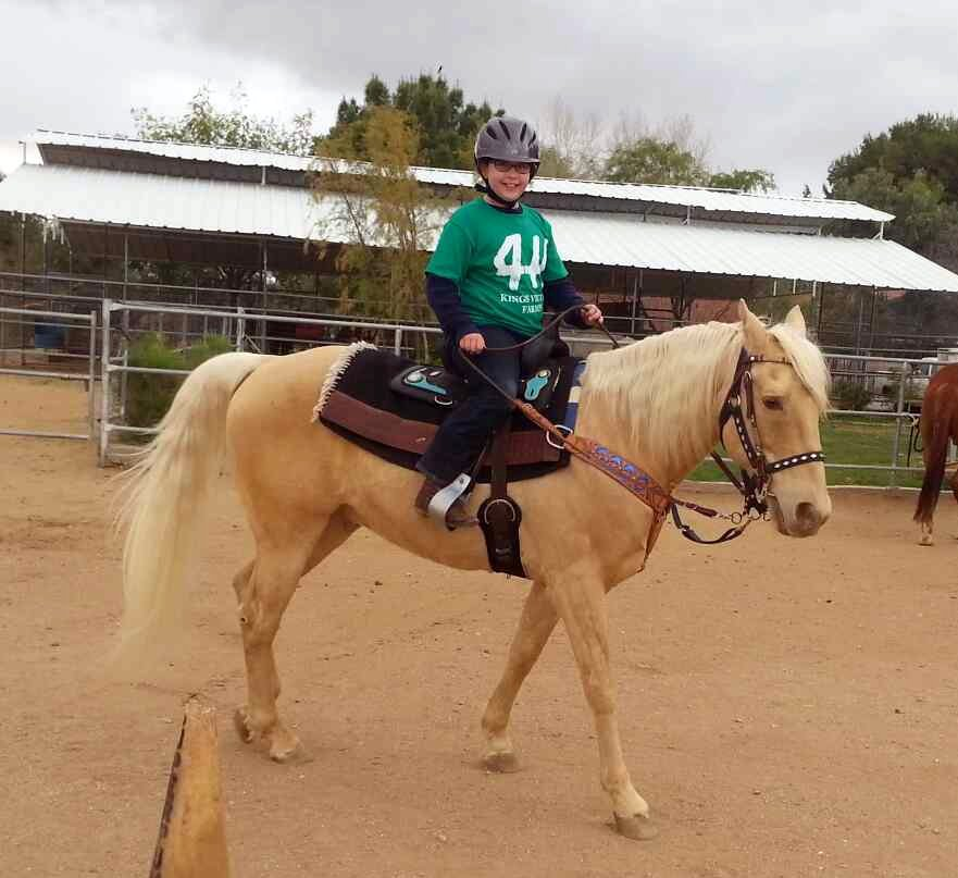 Summer Horse Camp | Kings Victory Farms